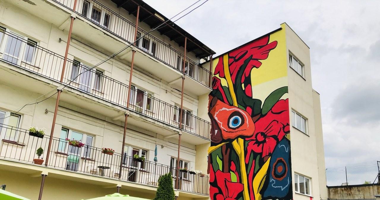 """Barwny mural na ścianie łódzkiego DPS-u. """"W jesienne dni będzie wnosił powiew lata i wiosny"""""""