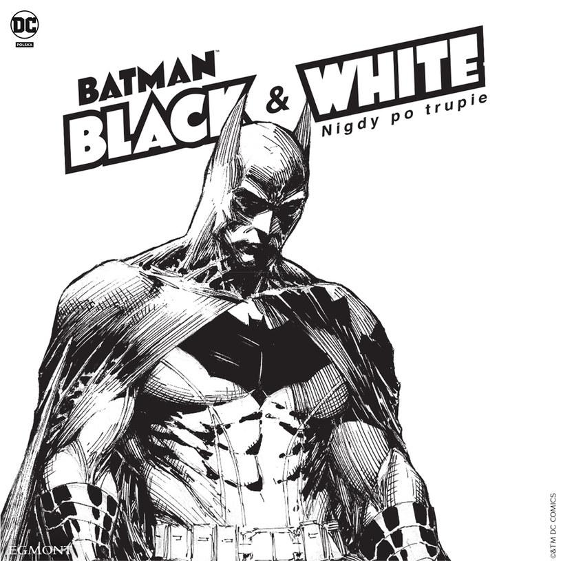 Batman: Black and White /materiały prasowe
