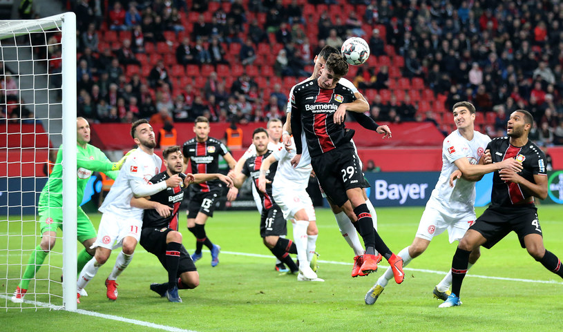 Bayer - Fortuna /Getty Images