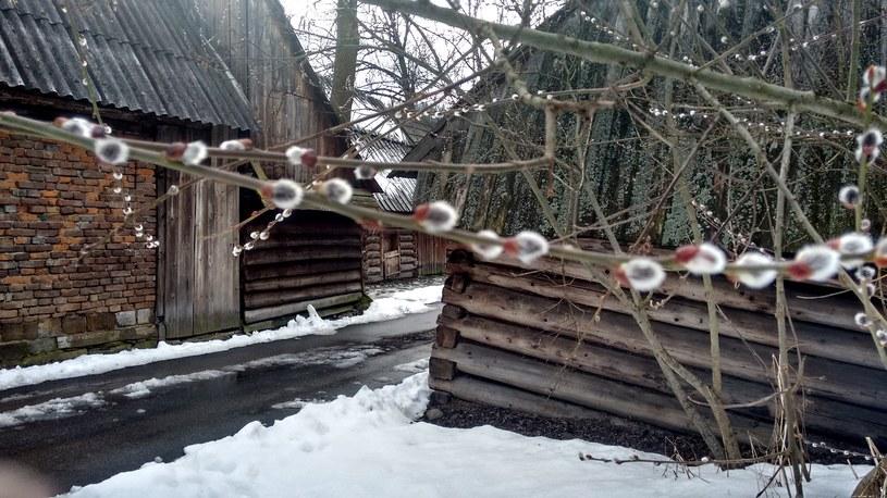 Bazie w Jurgowie /ZM /INTERIA.PL