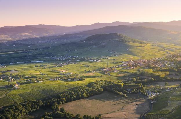 Beaujolais - region winiarski, wieđ Cercie /©123RF/PICSEL