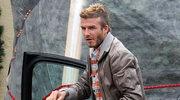 Beckham dostał od żony psa