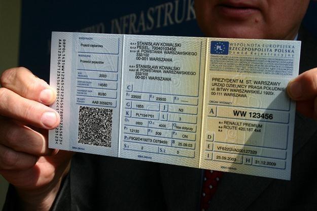 Będą zmiany w zasadach rejestracji pojazdów / Fot: Damian Ruciński /Reporter