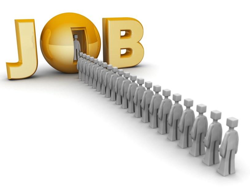 Będzie 450 nowych miejsc pracy w Polsce /123RF/PICSEL