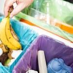 Będzie odpowiedzialność zbiorowa dla lokatorów za niesegregowanie śmieci