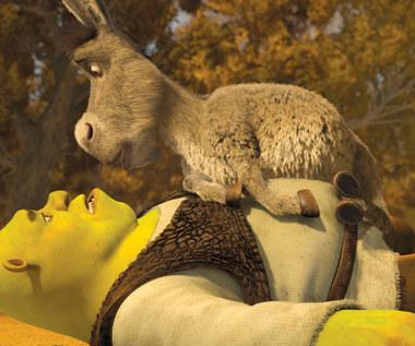 Będzie piąty film o Shreku!