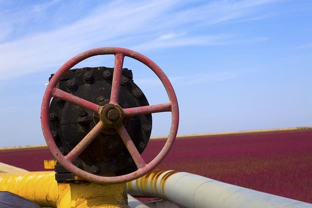 Będziemy mniej płacić za gaz? /©123RF/PICSEL