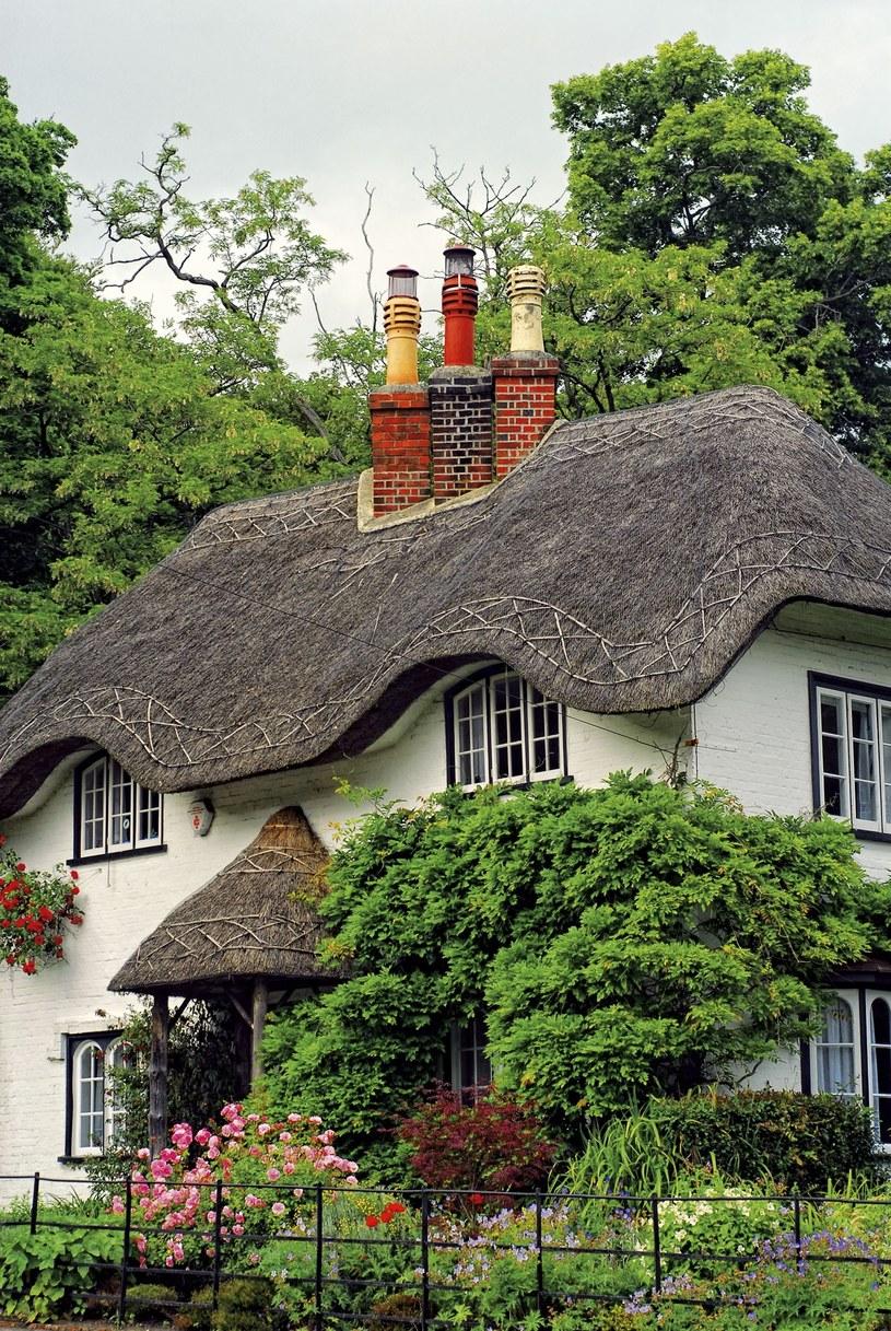 Beehive Cottage - najsławniejszy domek w Lyndhurst. Jest wart pół miliona funtów  /Twój Styl