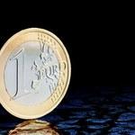 Belka: Zamknijmy oczy i wskoczmy do basenu ze wspólną walutą