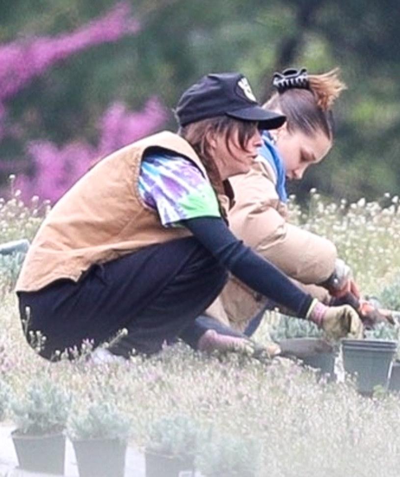Bella Hadid z mamą sadzą zioła /BACKGRID /Agencja FORUM