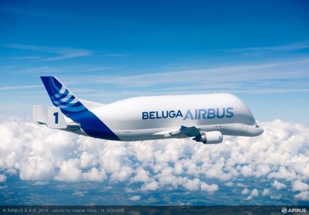 Beluga.    Fot. Airbus /materiały prasowe