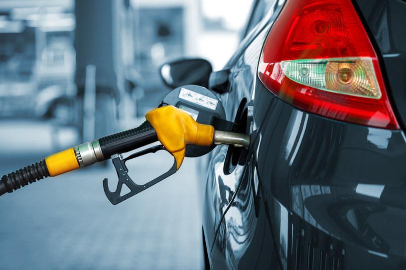 Benzyna może podrożeć do 8 zł /123RF/PICSEL