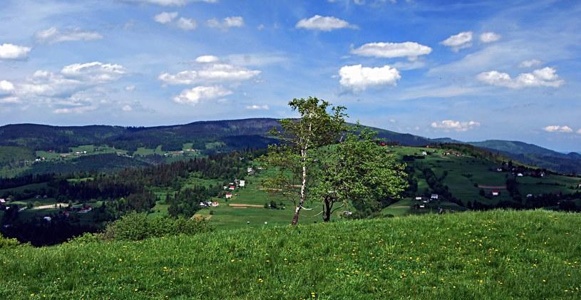 Beskid Śląski /Picsel /123RF/PICSEL