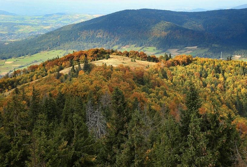 Beskid Wyspowy. Szczyt Mogielica, widok z wieży widokowej /MONKPRESS /East News