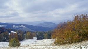 Beskidy: Spadł pierwszy śnieg