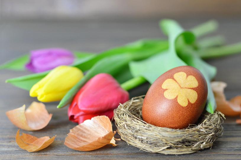 Bez jajek nie ma świąt wielkanocnych /123RF/PICSEL