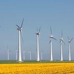 Bez liberalizacji ustawy odległościowej wiatraki znikną z aukcji OZE?