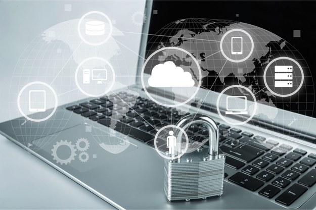 Bezpieczeństwo sieci jest ważnym elementem sektora IT w polskich firmach /123RF/PICSEL