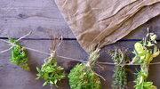 Bezpieczne zioła