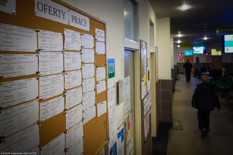 Bezrobotni nie decydują się na śmieciowe oferty. Wybierają szarą strefę /fot. Piotr Kamionka /Reporter