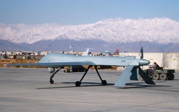 Bezzałogowy dron Predator /AFP