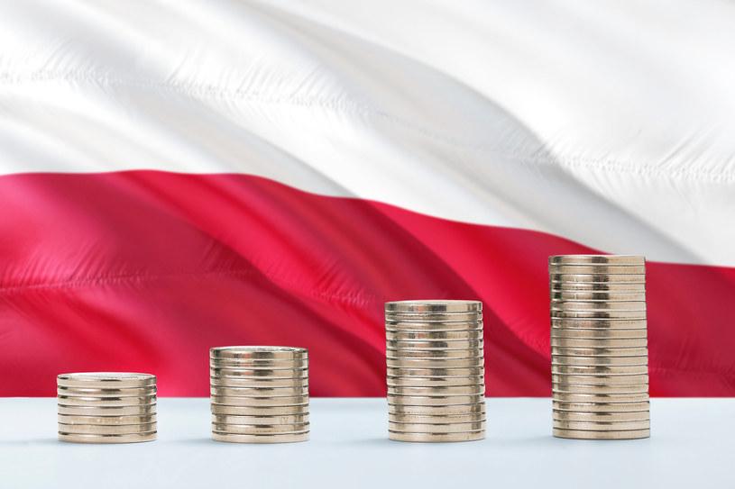 BGK będzie wspierał polską gospodarkę /123RF/PICSEL