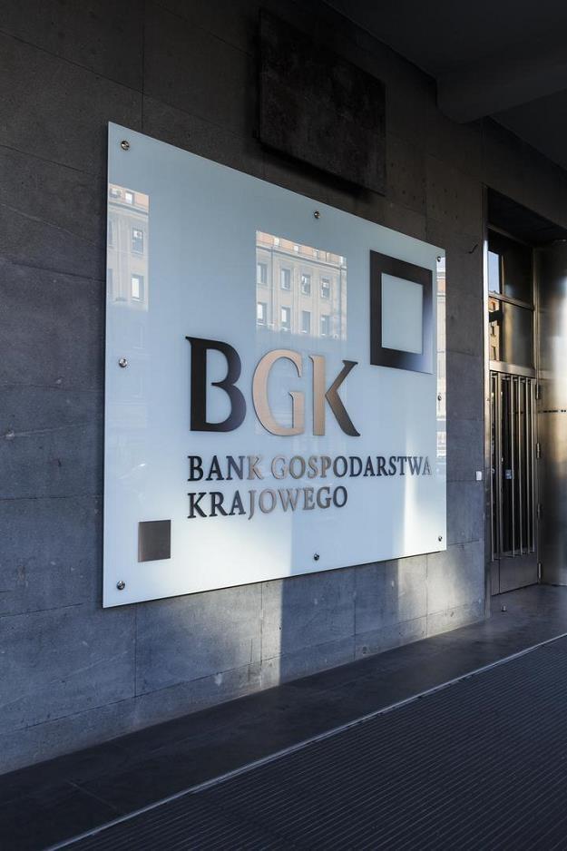 BGK to wsparcie przedsiębiorczości /INTERIA.PL