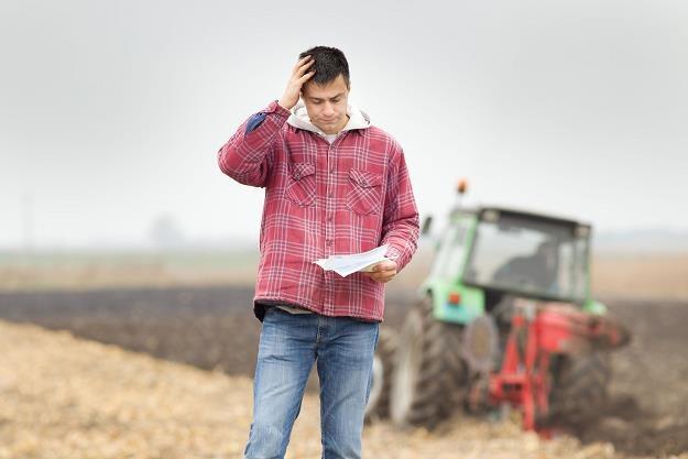 BGK udzieli rolnikom gwarancji kredytowych /©123RF/PICSEL