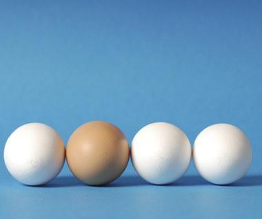 Biała czy brązowa skorupka: które jajka kupować?