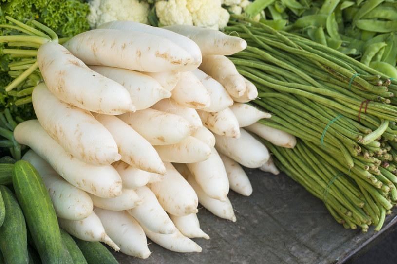 Biała rzodkiew jest cenniejsza odżywczo od lubianych przez Polaków rzodkiewek /123RF/PICSEL