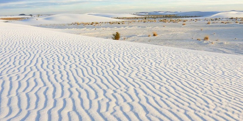 Białe wydmy łatwo mogą ulec zniszczeniu, więc w wielu miejscach do ich ochrony przykłada się dużą uwagę. Z drugiej strony przyciągają czasem turystów, którzy raczej nie zdają sobie sprawy z tego, że mogą je zniszczyć. /Wikimedia Commons /domena publiczna