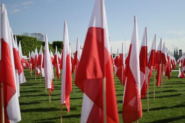 Biało-czerwona - nasza flaga narodowa /Michał Dukaczewski /Archiwum RMF FM