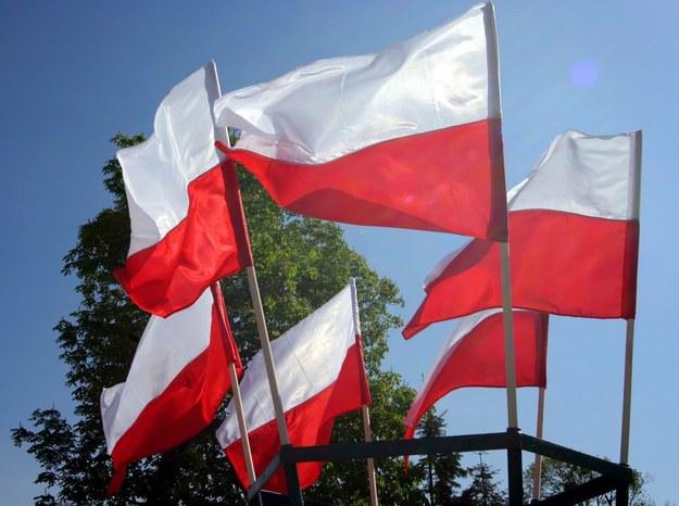 Biało-czerwona /Włodzimierz Echeński /East News