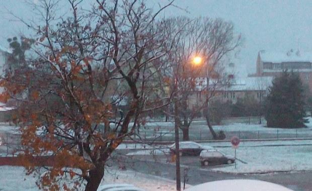 Biało w Warmińsko-Mazurskiem. Śnieg spadł w Olsztynie
