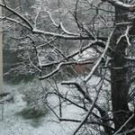 Biało w Zakopanem. Zagrożenie lawinowe w Tatrach