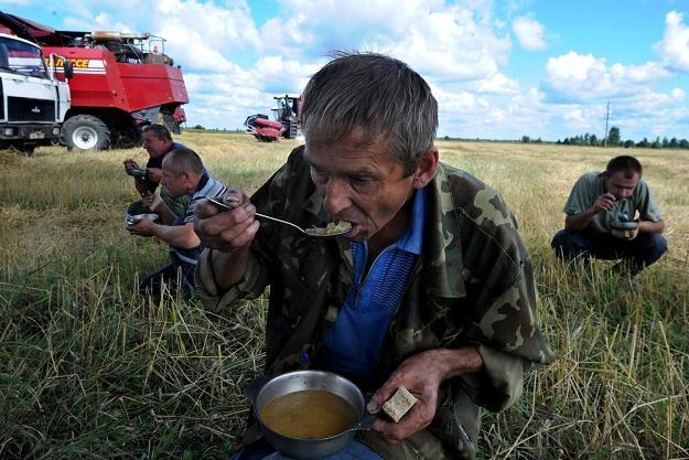 Białoruś sprzeda niedochodowe przedsiębiorstwa rolne /AFP