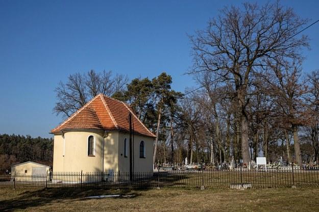 Biegaczka została zaatakowana w piątkowy wieczór w pobliżu cmentarza w Skokach /Jakub Kaczmarczyk /PAP