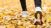 Bieganie – co warto sprawdzić, zanim zacznie się trenować?