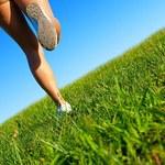 Bieganie po miękkim nie chroni przed urazami