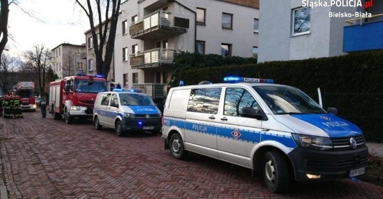 Bielsko-Biała: 6-latka weszła sama na dach. Miejsce policyjnej interwencji /Śląska policja /Policja
