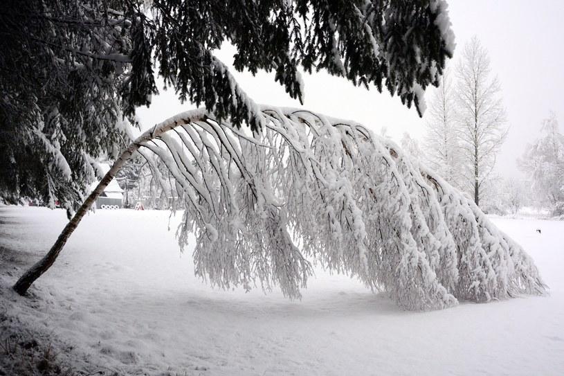 Bieszczady w śniegu /Wojciech Zatwarnicki /Reporter