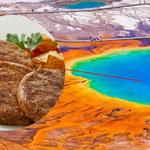 Bill Gates stawia na jedzenie z drobnoustrojów wulkanicznych