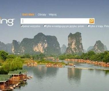 Bing - 10 procent udziału w rynku wyszukiwarek