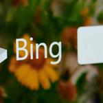Wyszukiwarka Microsoftu