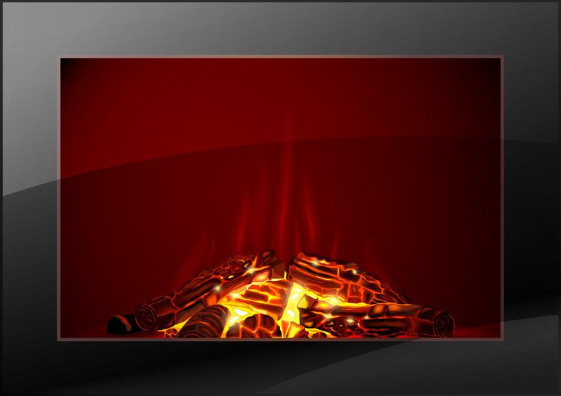 Biokominek jest opalany bezpiecznym dla zdrowia paliwem /123RF/PICSEL