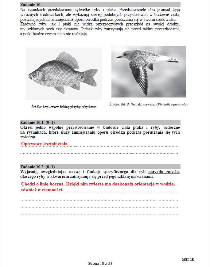 Biologia - poziom rozszerzony, str. 10 /INTERIA.PL