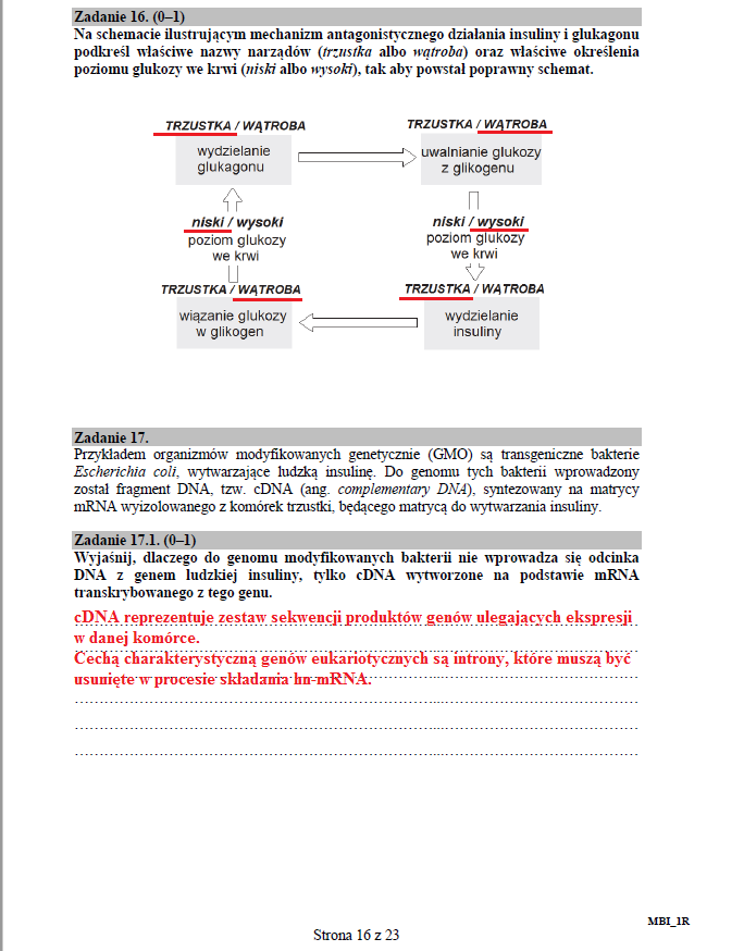 Biologia - poziom rozszerzony, str. 16 /INTERIA.PL