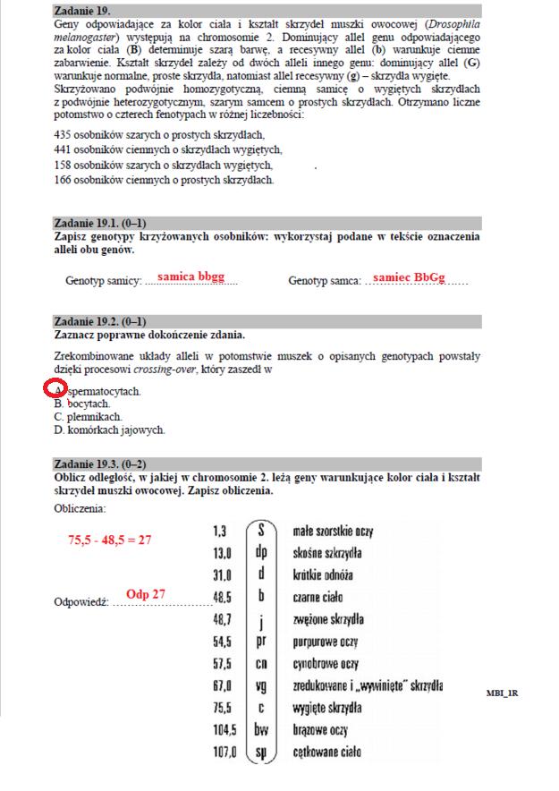 Biologia - poziom rozszerzony /INTERIA.PL