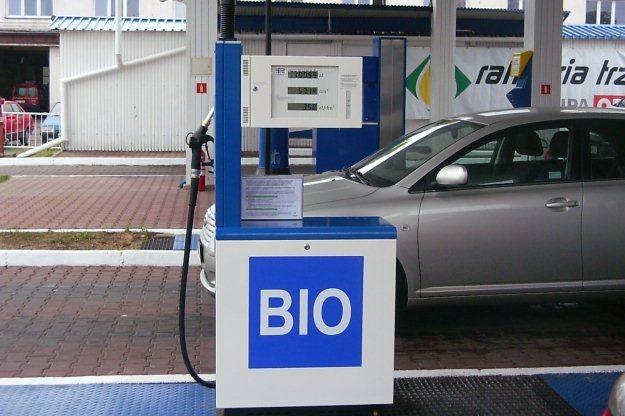 Biopaliwa prowadzą do wzrostu cen żywności /INTERIA.PL