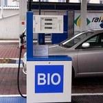 Biopaliwa uderzą po kieszeni